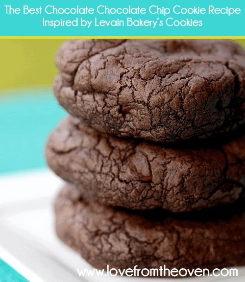 The Best Chocolate Chocolate Chip Cookie Recipe Inspired By Levain ...