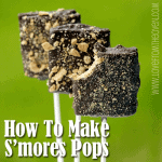 Chocolate Covered S'mores Pops