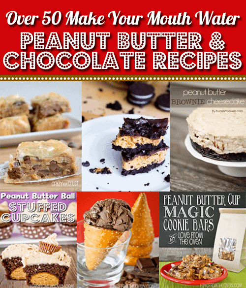 Over 50 Of The Most Crazy Delicious Chocolate & Peanut Butter Recipes On The Web - A Must See Post at Love From The Oven