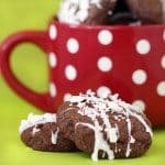 double chocoalte candy cane bark cookies