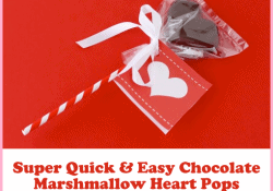 Quick And Easy Marshmallow Heart Pops for Valentine's Day by Love From The Oven