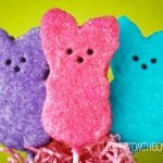 Chocolate Covered Peeps Treats-3307 copy