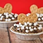 Easy No Bake S'mores Cheesecake Mousse Pies
