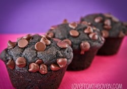 Chocolate Muffin Recipe by Love From The Oven