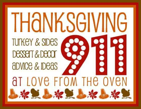 Thanksgiving 911