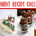 12 Days Of The Best Holiday Recipes<BR> Day 1 – Peppermint Bites From Other Blogs