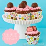 Cake Pop Topped Pink Velvet Cupcakes