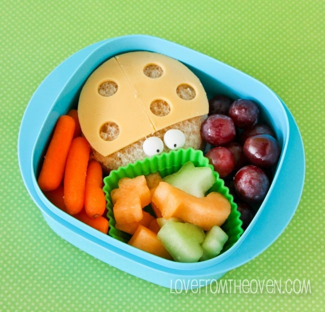 Lunch Box Supplies And Tools To Pack A Great School