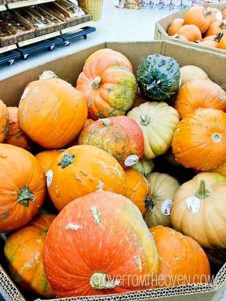 Pumpkins Are Hitting Stores
