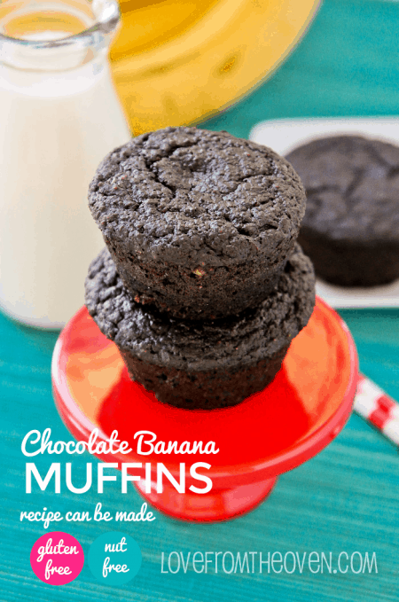 Gluten And Nut Free Muffin Recipe