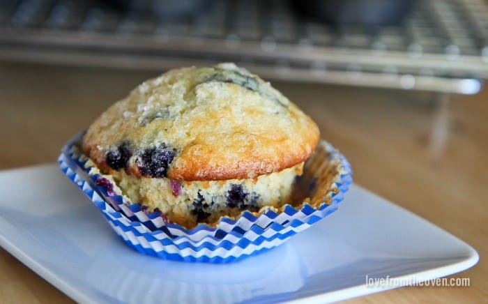 Lemon Blueberry Muffins With White Chocolate Chips