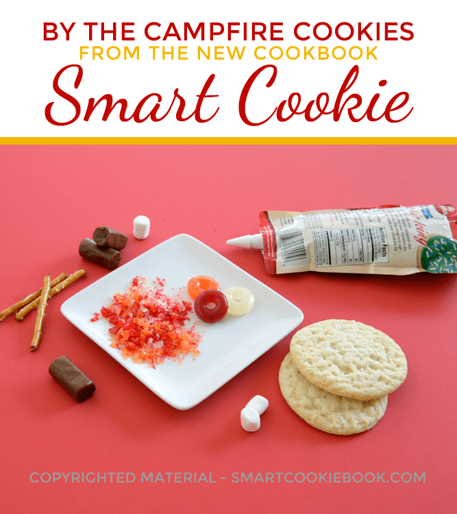 By The Campfire Cookies from SMART COOKIE Cookbook by Christi Johnstone