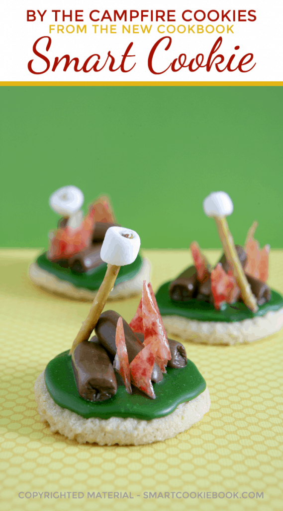 By The Campfire Cookies From Smart Cookie Cookbook