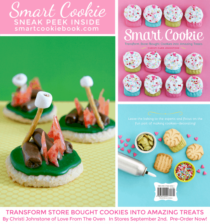 Smart Cookie Cookbook Preview Recipe - By The Campfire Cookies