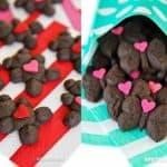 Chocolate Spritz Cookie Recipes