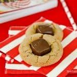 Biscoff Blossom Cookies