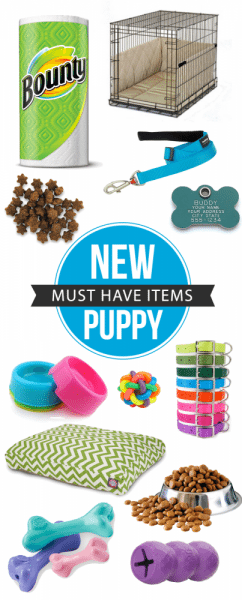List Of New Puppy Items