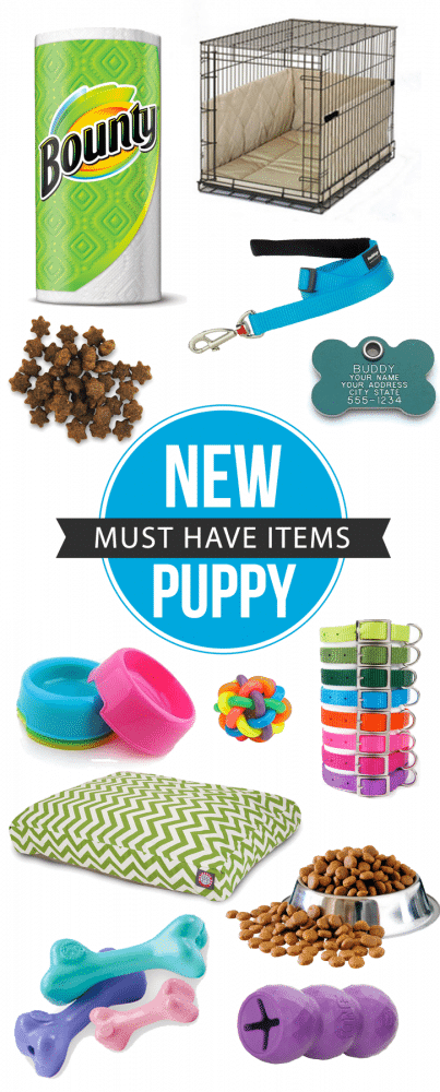 Must Have Items For A New Puppy