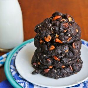 Overwhelming Chocolate Cookies (Autism Cookies)