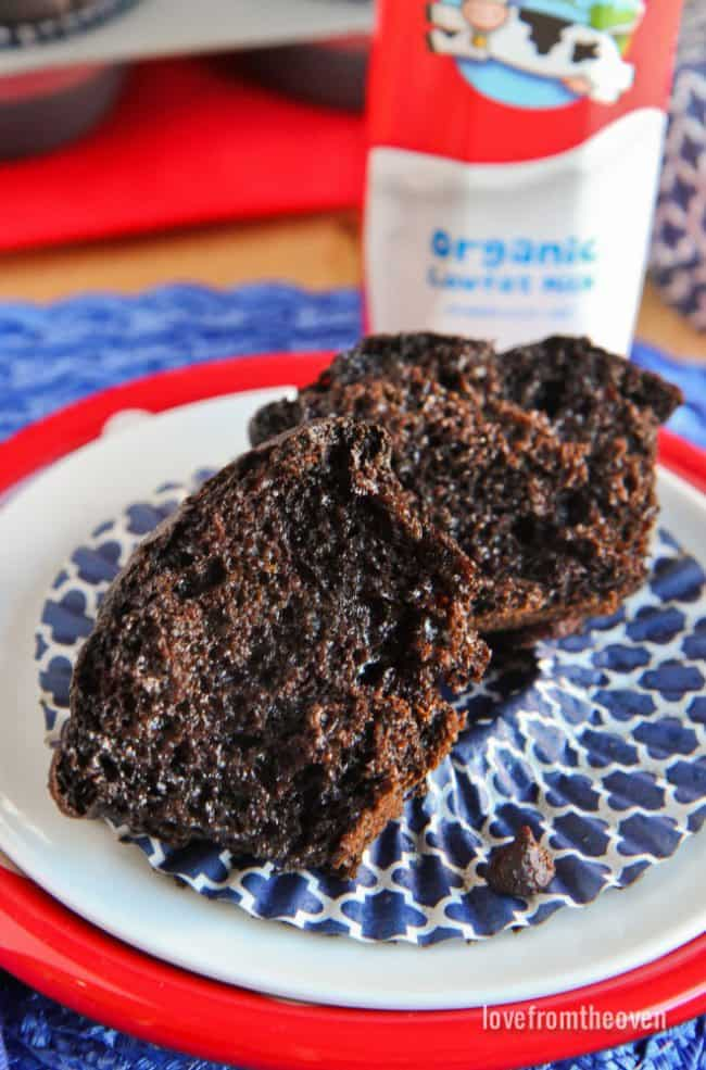Healthy Chocolate Muffin Recipe