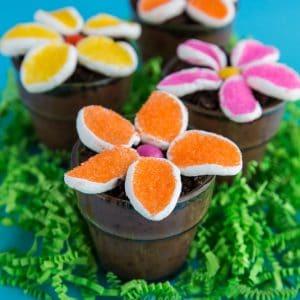 Jello Pudding Dirt Cups