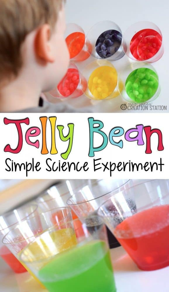 Jelly Bean Science Experiment
