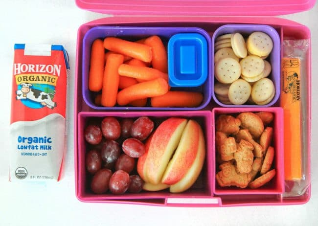 Cute Lunchbox Ideas For Kids
