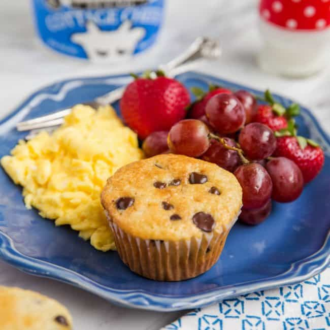Sour Cream Chocolate Chip Muffin Recipe