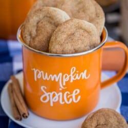 PumpkinSnickerdoodles