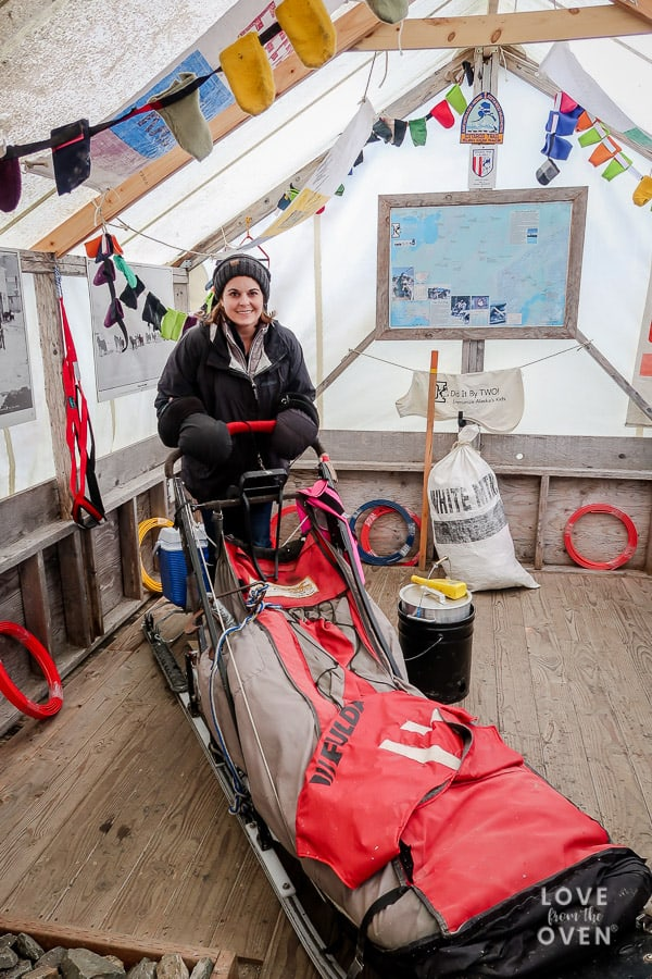 Juneau Cruise Excursions