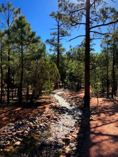 Pinetop Arizona