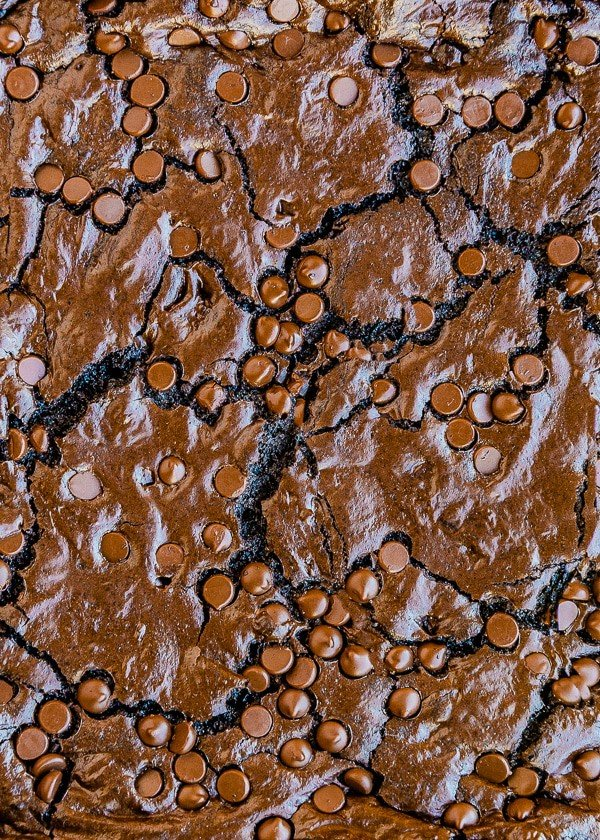 Close up photo of homemade chocolate brownies with chocolate chips