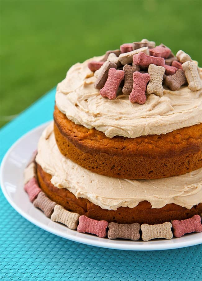 Dog cake topped with dog treats on white plate