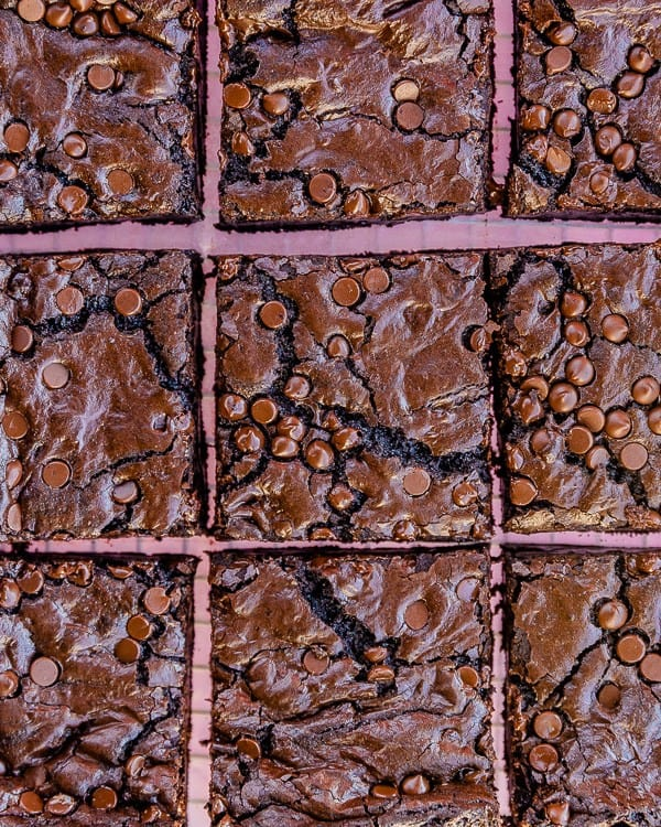 Overhead shot of square-cut brownies