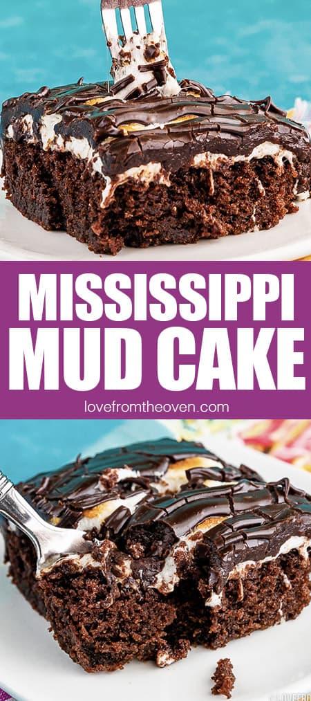 photos of Mississippi mud cake