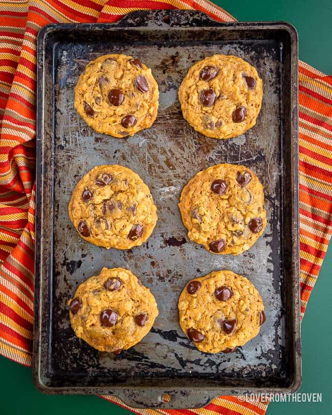 A baking sheet of pumpkin chocolate chip cookies