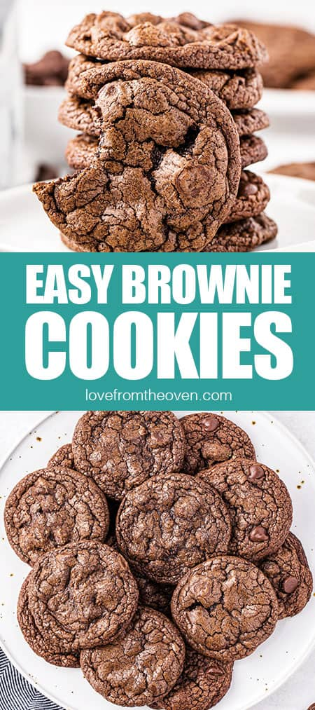 pictures of chocolate brownie cookies up close