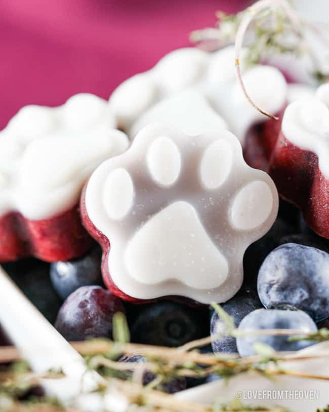 a bowl of blueberries and dog treats
