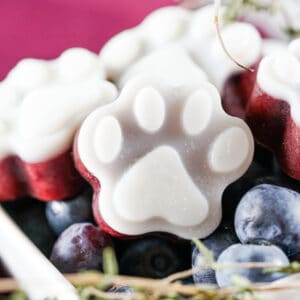 a close up of a frozen blueberry dog treat