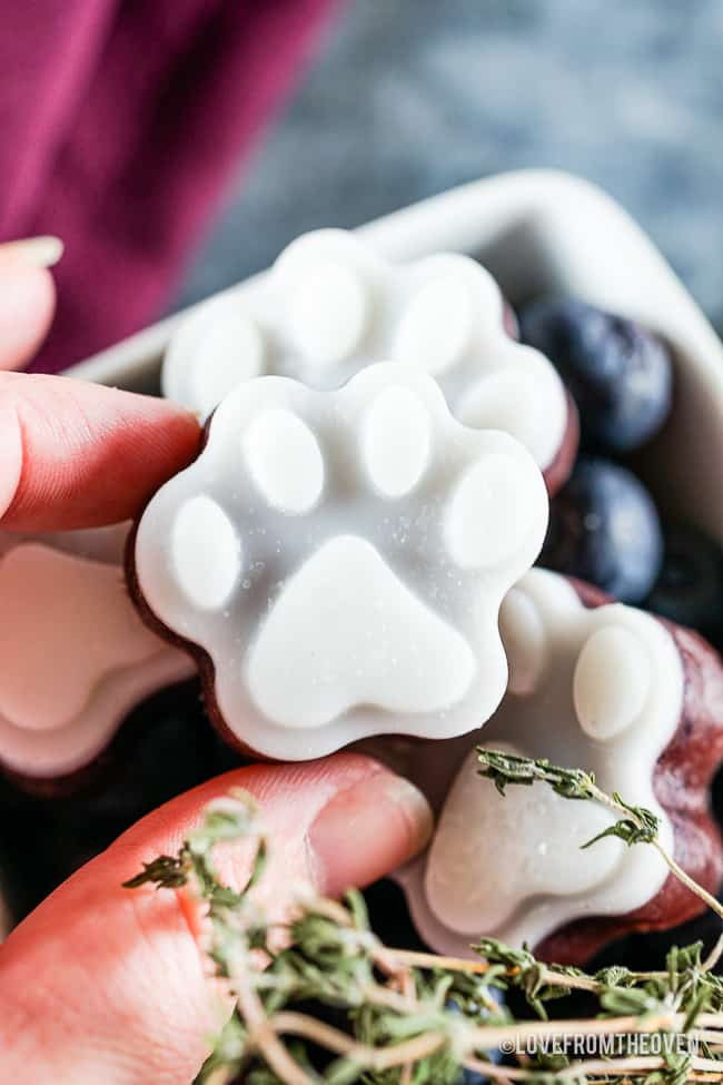 A hand holding a frozen dog treat