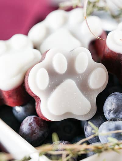 blueberry-frozen-dog-treats