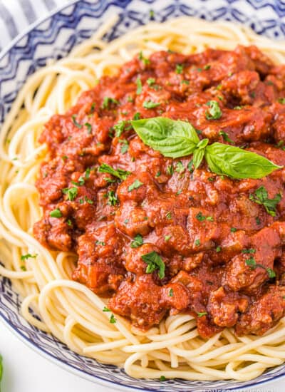 A bowl of pasta with homemade spaghetti sauce