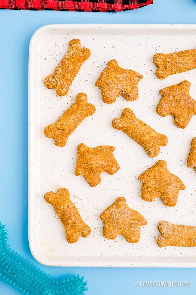 a tray of dog treats