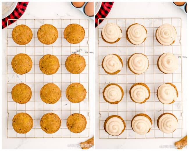 Cupcakes for dogs, with and without frosting.