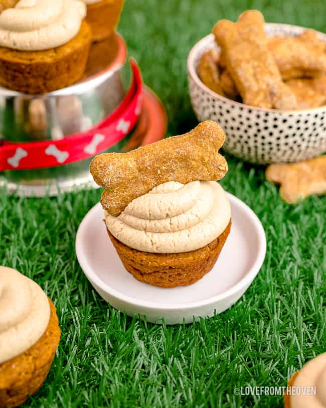 Dog cupcakes with bones on top.