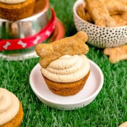 A dog cupcake on a plate on green grass.