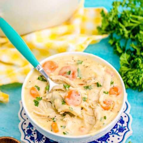 a bowl of chicken and dumplings with tortillas